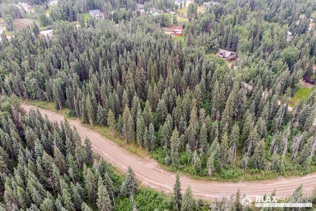NHN Lowood, North Pole, AK 99705 (MLS #20-10543) :: Wolf Real Estate Professionals