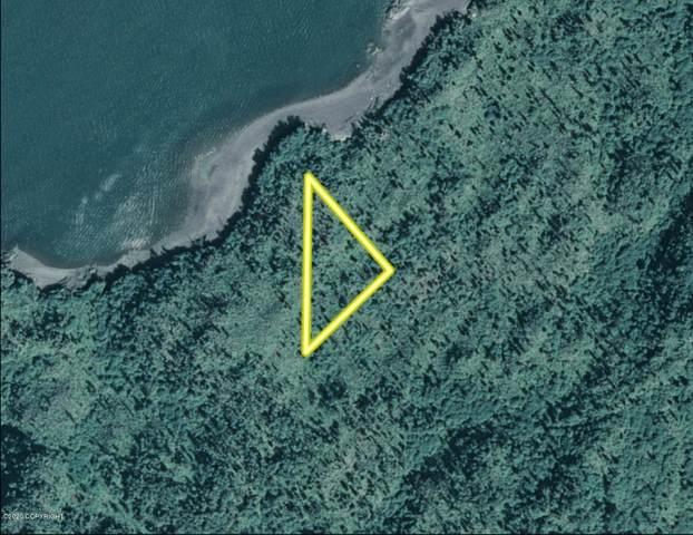 NKA Bear Cove, Homer, AK 99603 (MLS #20-10670) :: Alaska Realty Experts