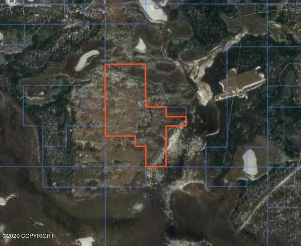 Remote Goose Bay State Game Refuge, Wasilla, AK 99654 (MLS #20-10734) :: Alaska Realty Experts
