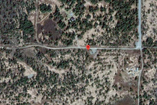 000 Tract 50, Anchor Point, AK 99556 (MLS #20-11173) :: Wolf Real Estate Professionals