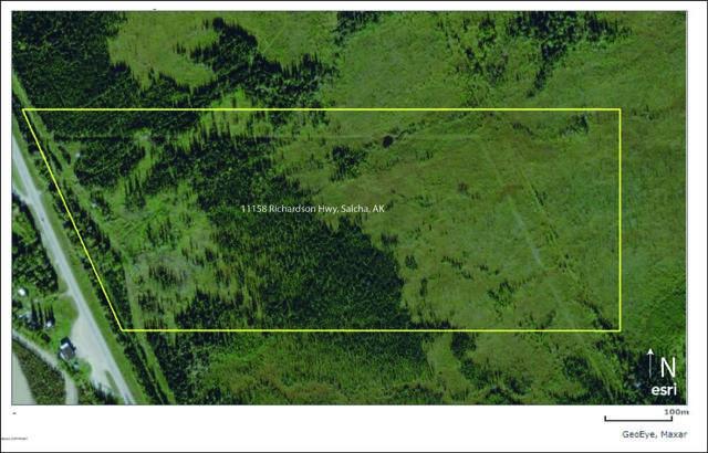 11158 Richardson Highway, Salcha, AK 99714 (MLS #20-11222) :: Alaska Realty Experts