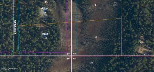 42431 S Iditaski Drive, Talkeetna, AK 99676 (MLS #20-11332) :: RMG Real Estate Network | Keller Williams Realty Alaska Group