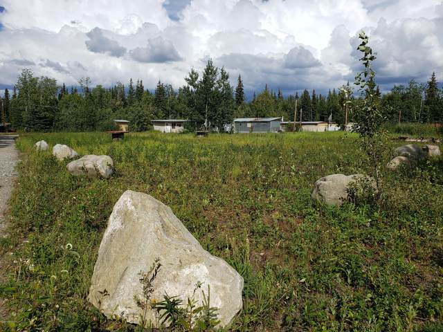 L1 Jack Warren Road, Delta Junction, AK 99737 (MLS #20-11353) :: Wolf Real Estate Professionals