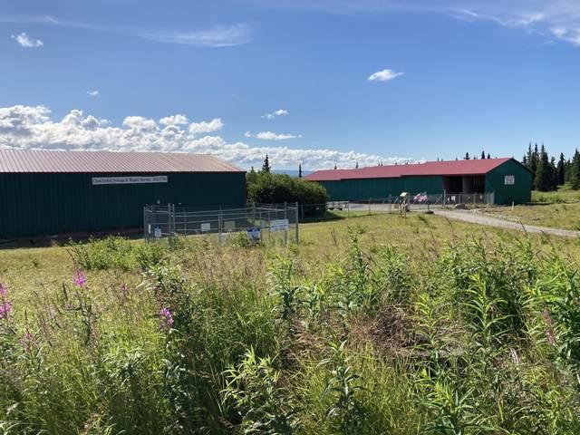 56407 Blueberry Avenue, Clam Gulch, AK 99568 (MLS #20-11685) :: The Adrian Jaime Group   Keller Williams Realty Alaska