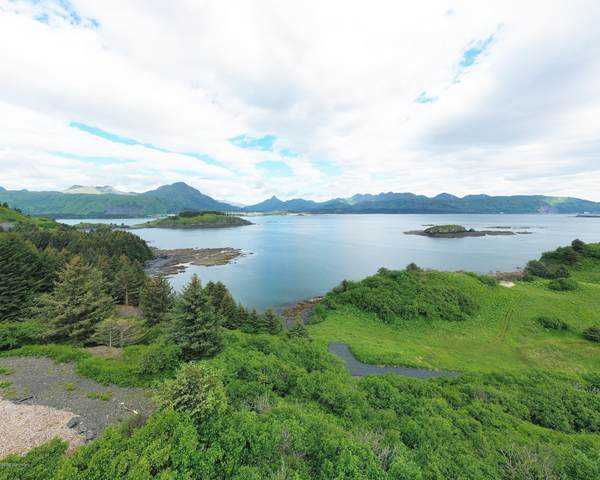 L5 Beaches - Cliff Point Estates, Kodiak, AK 99615 (MLS #20-11701) :: Wolf Real Estate Professionals