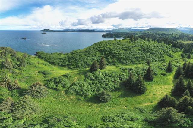 L4 Beaches - Cliff Point Rd., Kodiak, AK 99615 (MLS #20-11781) :: Wolf Real Estate Professionals
