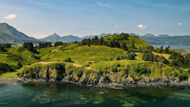 L16 Beaches - Cliff Point Rd., Kodiak, AK 99615 (MLS #20-11785) :: Wolf Real Estate Professionals