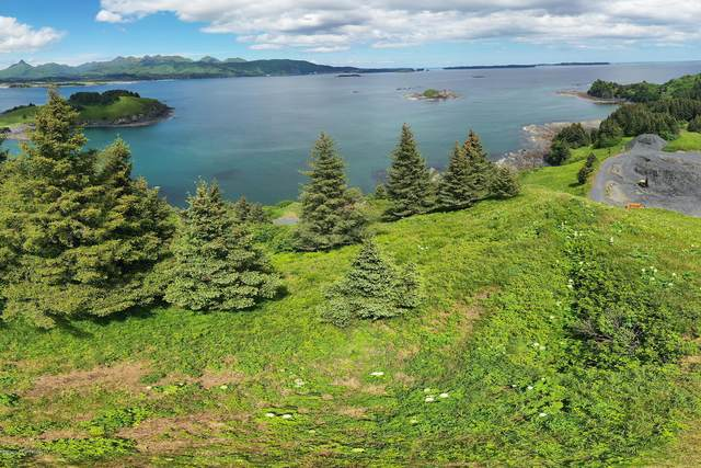 L1 Anchor Cove-Cliff Point Estate, Kodiak, AK 99615 (MLS #20-11821) :: Wolf Real Estate Professionals