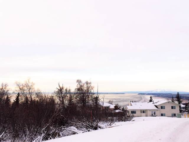 L2 B2 Potter Valley Road, Anchorage, AK 99516 (MLS #20-119) :: Wolf Real Estate Professionals