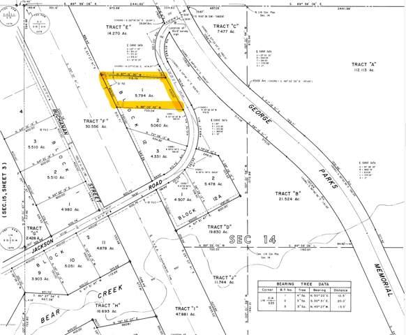 L1 B12 Jackson Road, Healy, AK 99743 (MLS #20-1200) :: RMG Real Estate Network | Keller Williams Realty Alaska Group