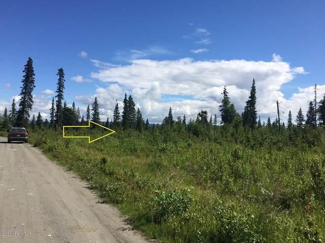 31386 Hannah Rene Road, Anchor Point, AK 99556 (MLS #20-12045) :: Alaska Realty Experts
