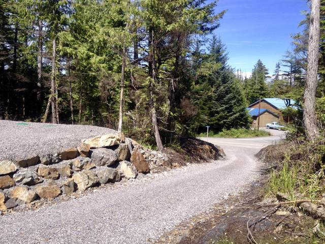 19A Logger's Lane, Coffman Cove, AK 99918 (MLS #20-12088) :: Wolf Real Estate Professionals