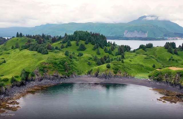 L9 The Point-Cliff Point Estates, Kodiak, AK 99615 (MLS #20-12100) :: Alaska Realty Experts