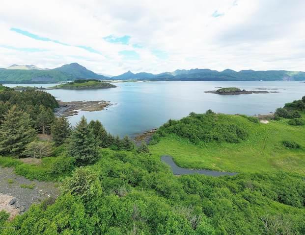 L4 Highliner -Cliff Point Estates, Kodiak, AK 99615 (MLS #20-12104) :: Alaska Realty Experts