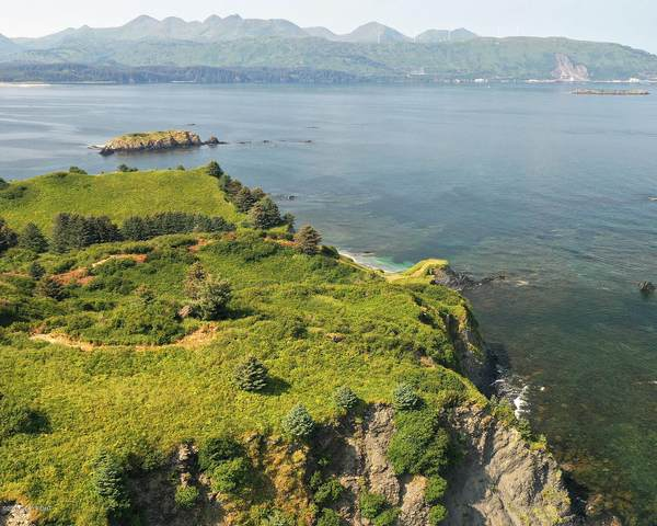 L2 Anchor Cove-Cliff Point Estate, Kodiak, AK 99615 (MLS #20-12105) :: Wolf Real Estate Professionals