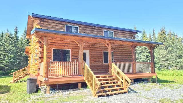 17277 Palmer Family Lane, Ninilchik, AK 99639 (MLS #20-12189) :: Wolf Real Estate Professionals