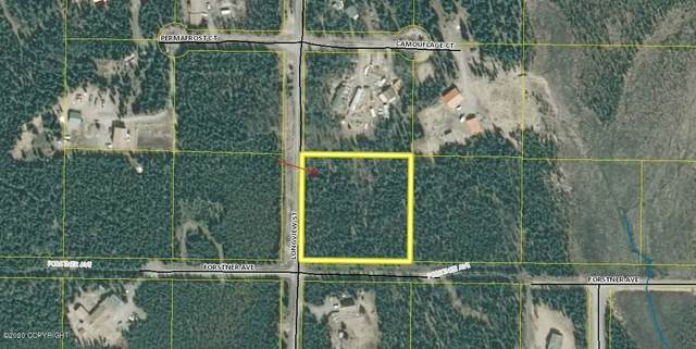 L6 B2 Longview Street, Sterling, AK 99672 (MLS #20-12220) :: Wolf Real Estate Professionals