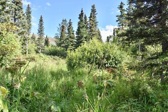 L3A B6V Rabbit Creek View Heights, Anchorage, AK 99516 (MLS #20-12222) :: RMG Real Estate Network | Keller Williams Realty Alaska Group