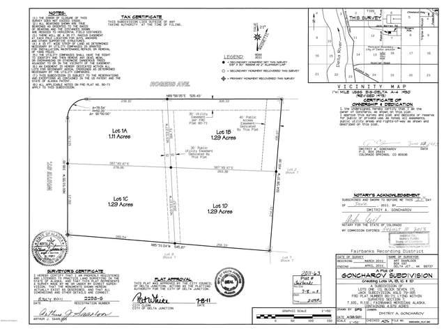 NHN White Street, Delta Junction, AK 99737 (MLS #20-12235) :: RMG Real Estate Network | Keller Williams Realty Alaska Group