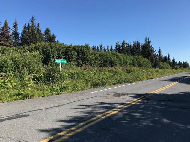 L8 Skyline Drive, Homer, AK 99603 (MLS #20-12258) :: Wolf Real Estate Professionals