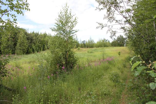 11580 W Arctic Orchard Lane, Big Lake, AK 99652 (MLS #20-12401) :: Team Dimmick