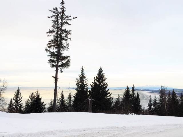 L9 B2 Potter Valley Road, Anchorage, AK 99516 (MLS #20-125) :: Wolf Real Estate Professionals