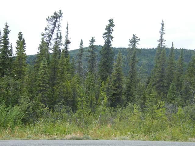 Mi 115 Richardson Highway, Glennallen, AK 99588 (MLS #20-12530) :: Wolf Real Estate Professionals