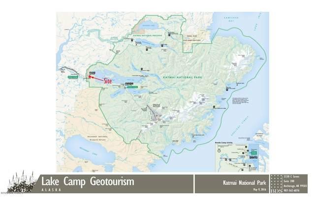 000 Katmai National Park, King Salmon, AK 99613 (MLS #20-12563) :: Wolf Real Estate Professionals