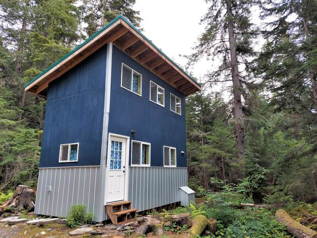 32618 Caines Head Road, Seward, AK 99664 (MLS #20-12576) :: Wolf Real Estate Professionals