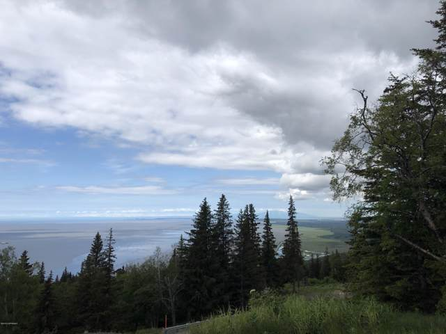 L3 B2 Potter Valley Road, Anchorage, AK 99516 (MLS #20-126) :: Wolf Real Estate Professionals