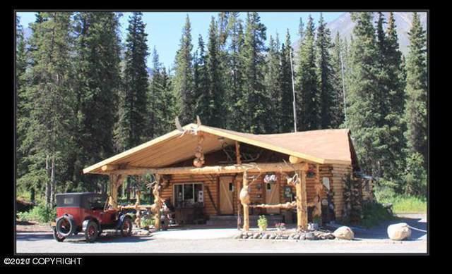 Mi 224 Parks Highway, Healy, AK 99755 (MLS #20-1261) :: RMG Real Estate Network | Keller Williams Realty Alaska Group