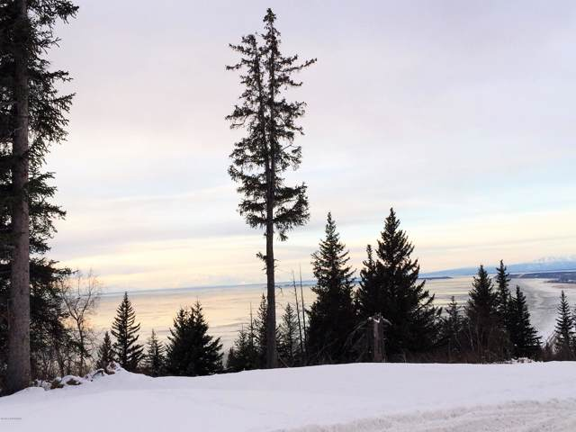 L7 B2 Potter Valley Road, Anchorage, AK 99516 (MLS #20-127) :: Wolf Real Estate Professionals
