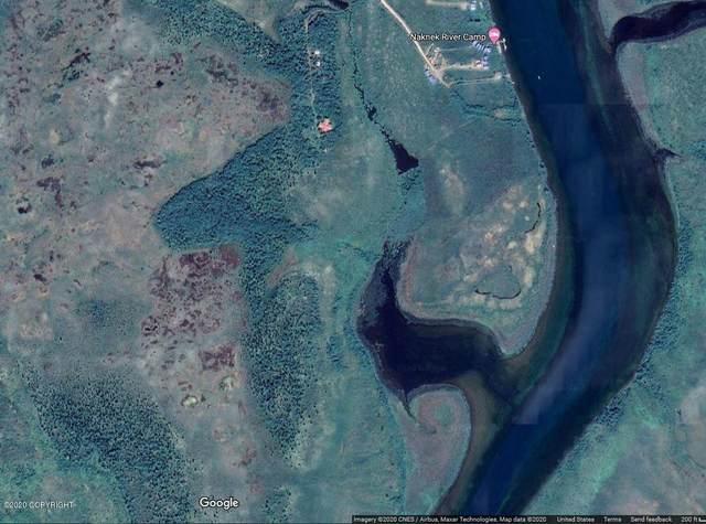 000 Naknek River, King Salmon, AK 99613 (MLS #20-12743) :: Daves Alaska Homes