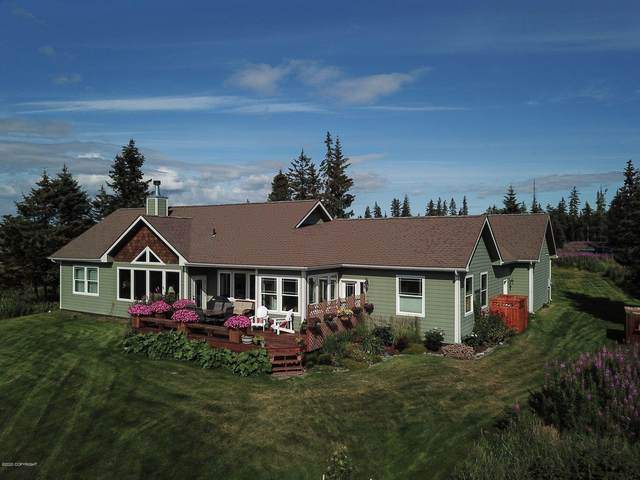 67538 Endless View Loop, Homer, AK 99603 (MLS #20-12809) :: Team Dimmick