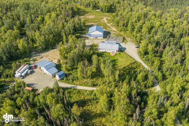 4800 Tanis Road, Wasilla, AK 99654 (MLS #20-12818) :: Wolf Real Estate Professionals