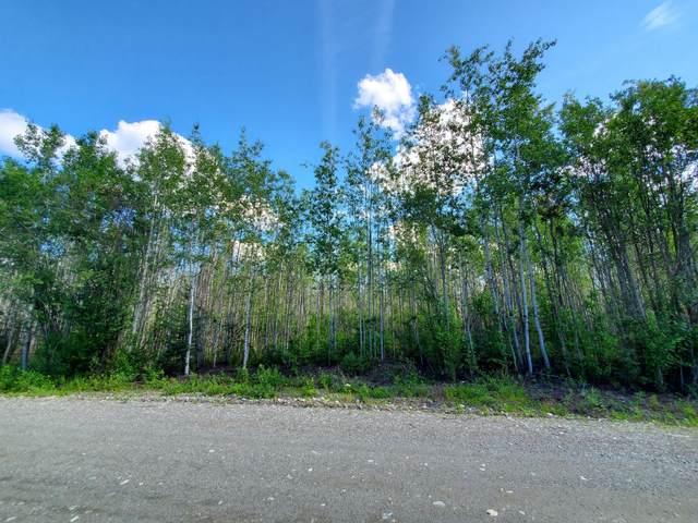 2723 S Beechwood Circle, Big Lake, AK 99652 (MLS #20-12841) :: Wolf Real Estate Professionals