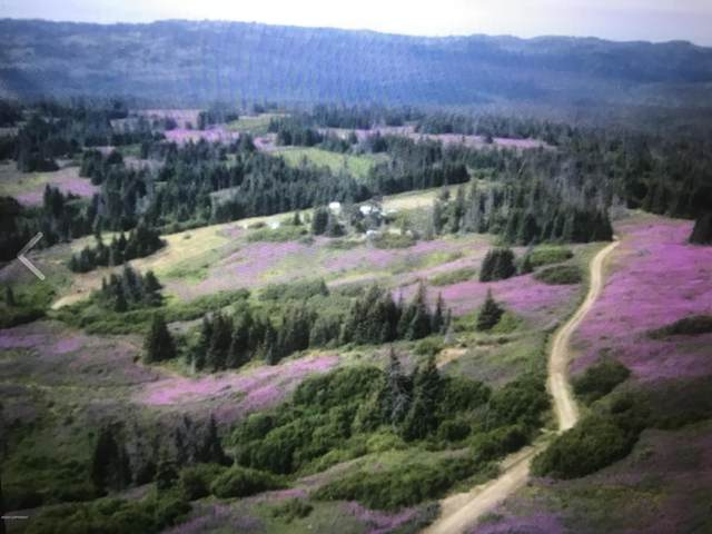 000 Easterday Road, Homer, AK 99603 (MLS #20-12857) :: Wolf Real Estate Professionals