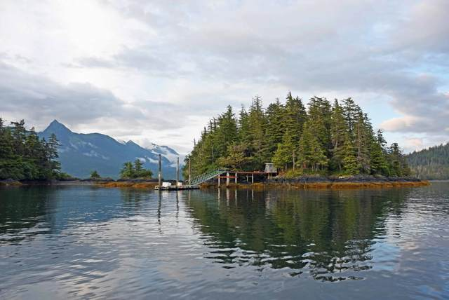 Moore Island, Sitka, AK 99835 (MLS #20-12902) :: Wolf Real Estate Professionals