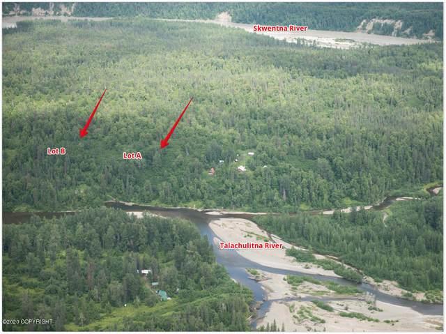 Tr B No Road, Remote, AK 99000 (MLS #20-12931) :: Wolf Real Estate Professionals