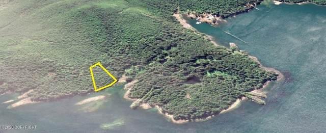 L7,BB Marble Island, Tokeen, AK 99903 (MLS #20-13088) :: Team Dimmick
