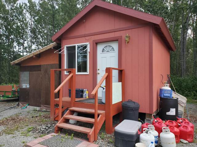 Mi 19.1 Edgerton Highway, Chitina, AK 99566 (MLS #20-13091) :: Wolf Real Estate Professionals