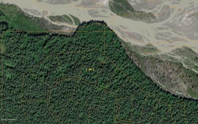 L14-1 B2 Canyon Lake (No Road), Remote, AK 99000 (MLS #20-13400) :: Wolf Real Estate Professionals