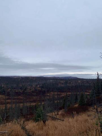 L7 B4 Caribou Hills, Homer, AK 99603 (MLS #20-1388) :: Roy Briley Real Estate Group