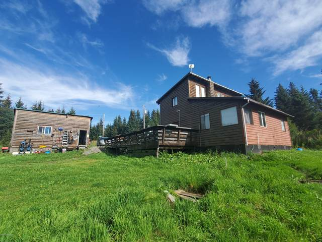 68107 Centurion Drive, Homer, AK 99603 (MLS #20-13939) :: Team Dimmick