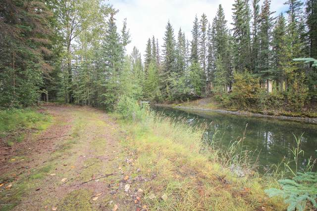 29030 Mickeys Loop, Sterling, AK 99672 (MLS #20-14026) :: Team Dimmick