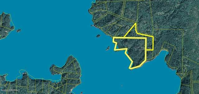 L2 B1 Mariners Walk & Us Survey 3023, Remote, AK 99603 (MLS #20-14087) :: RMG Real Estate Network | Keller Williams Realty Alaska Group