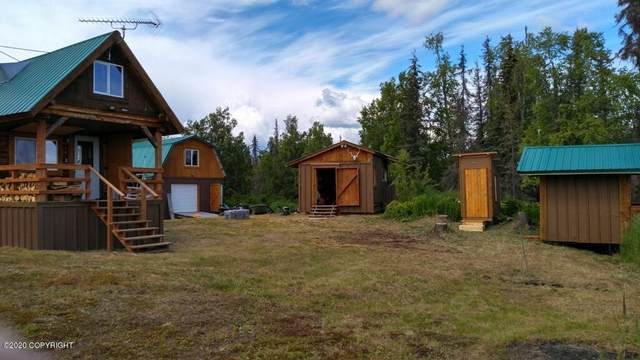 Tract A No Road Remote Petersville, Trapper Creek, AK 99683 (MLS #20-14092) :: Wolf Real Estate Professionals