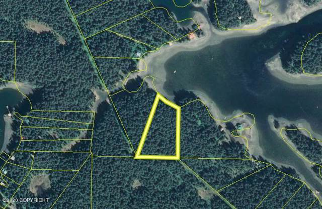 L17 B1 S Kachemak - Little Tutka Bay, Seldovia, AK 99663 (MLS #20-141) :: RMG Real Estate Network | Keller Williams Realty Alaska Group