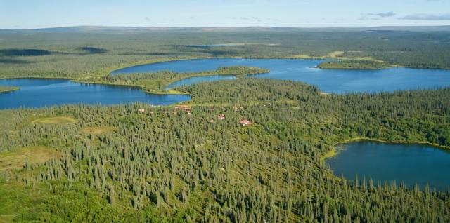 000 No Road Nonvianuk River, Egegik, AK 99000 (MLS #20-14167) :: Wolf Real Estate Professionals