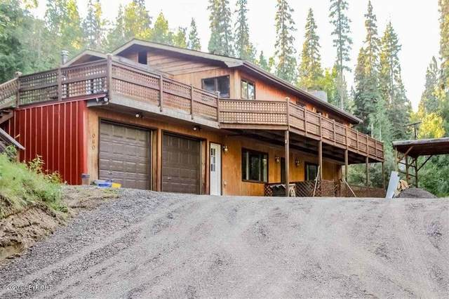 2060 Tribulation Trail, Fairbanks, AK 99709 (MLS #20-14281) :: The Adrian Jaime Group | Keller Williams Realty Alaska